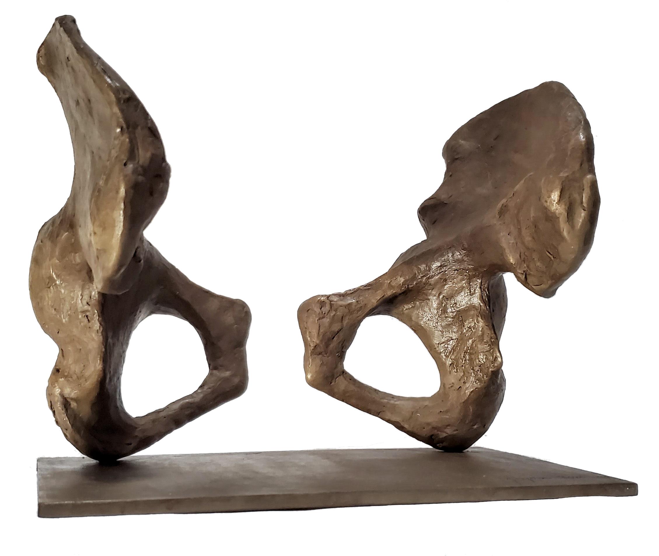 anatomy bronze sculpture human pelvis bone skeleton brown patina